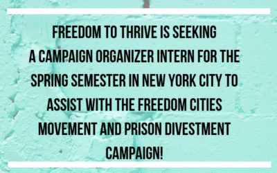 Campaign Organizer Intern